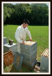 GAEC La Ferme au Miel - récolte de miel - Patrice Cahé
