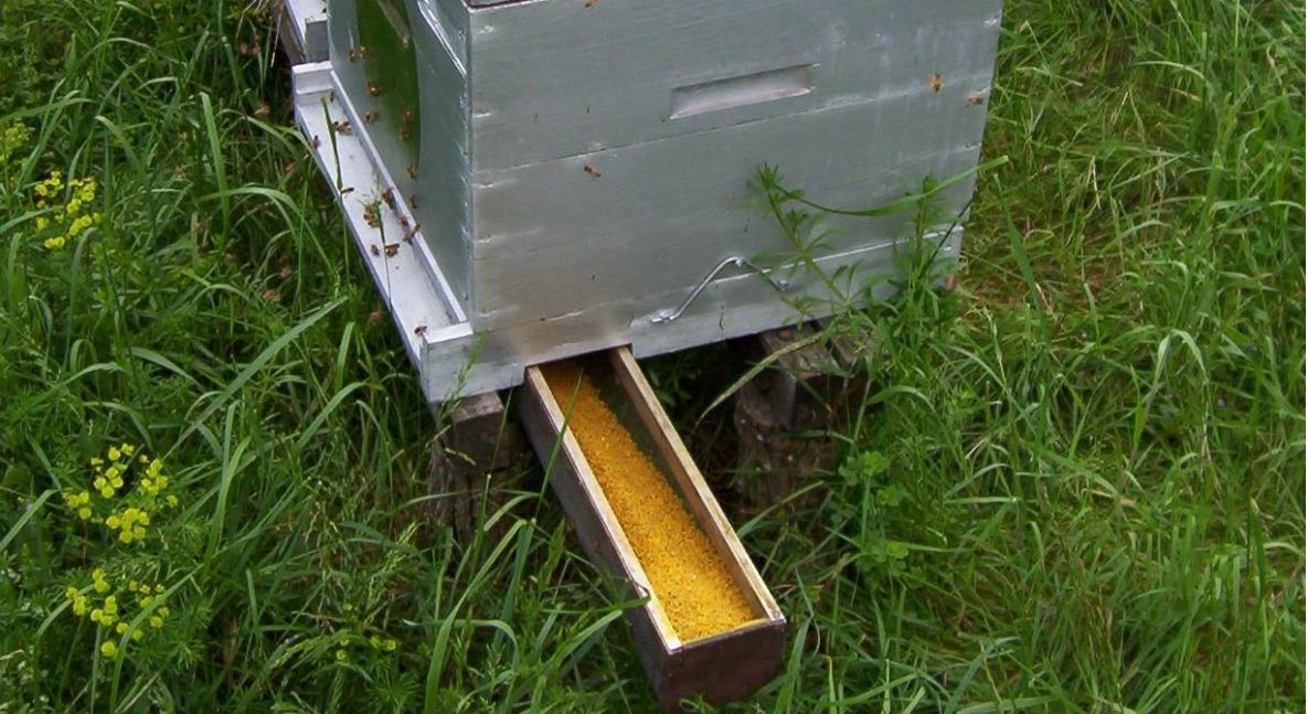 Pollen du jura - ruche équipé de trappe à pollen