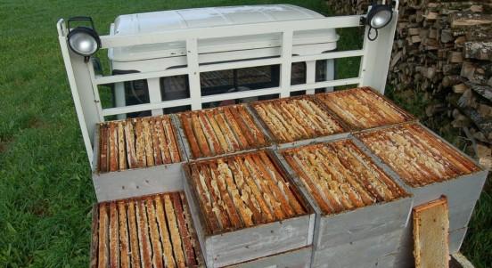 Produits de la ruche - hausses pleine de miel -