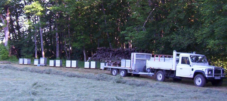 La Ferme au Miel : rucher en transhumance sur sapin dans le Jura